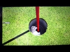 Hole in one! (Hot Shots Golf: World Invitational)