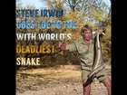 Steve Irwin Goes Against Deadliest Snake