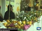 Dunya News - Mango Festival begins at Islamia University Bahawalpur