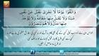 Surat - Al Baqarah - Ayat - 48 - Surah Al Baqarah