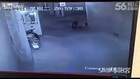 LiveLeak - Woman gets shot in chest when police opens fire at wild boar